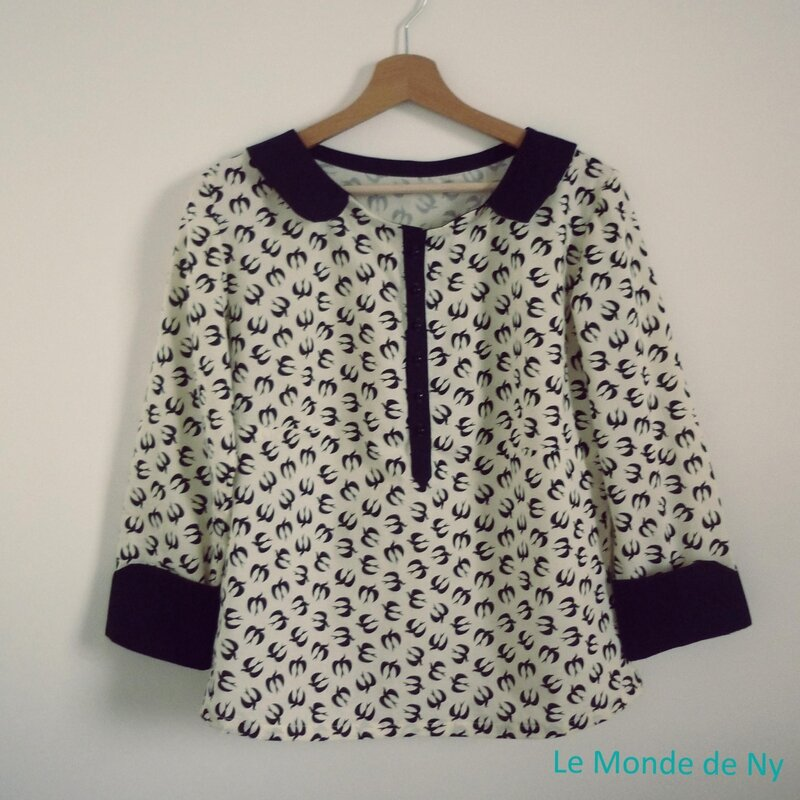 blouse indecise 6