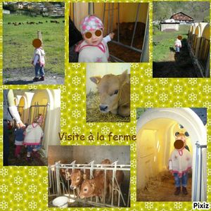 photocollageferme manon