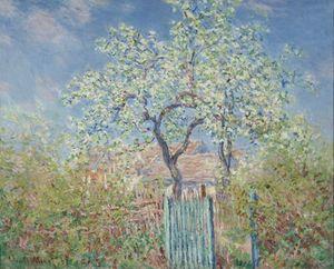 Poiriers_en_fleurs___1885