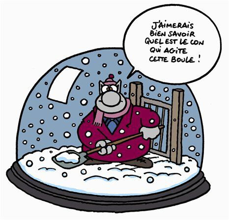 chat_hiver