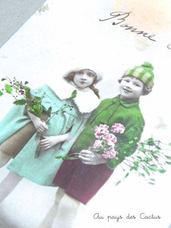 Cartes postales anciennes CPA Au pays des Cactus 3