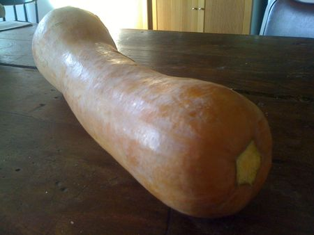 butternut