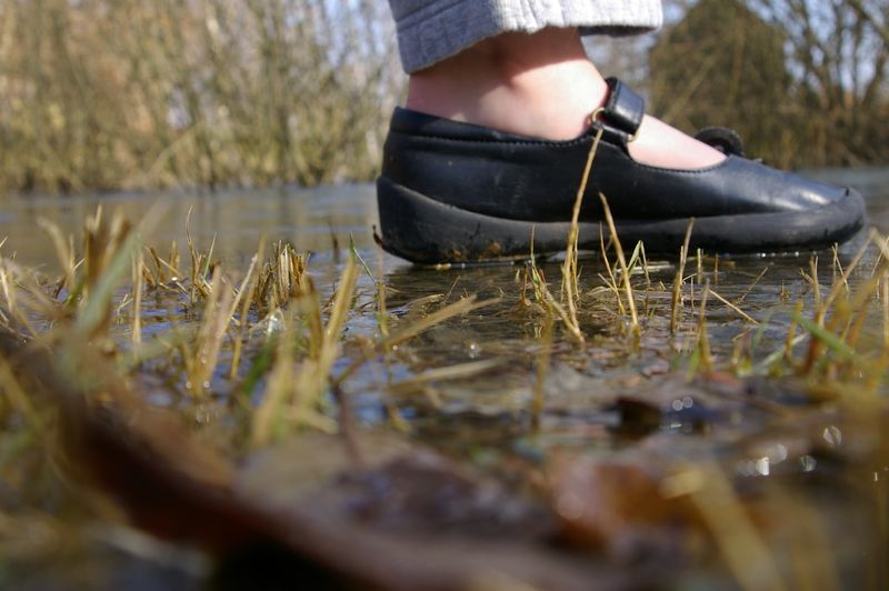 mare gelée pied lomé (1)