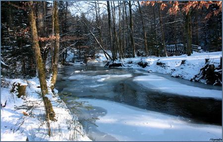 rivieregelée