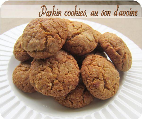 parkin cookies (scrap3)