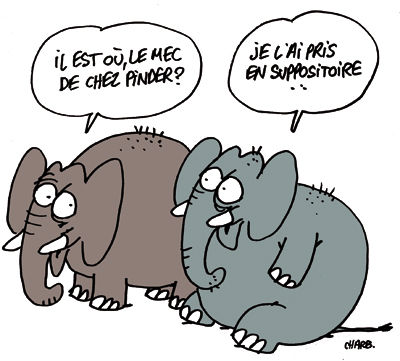 975_elephants_charb