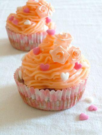 cupcake hibiscus rose (91)