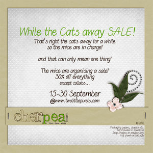 catsawaysalecopy