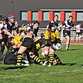 HORNETS_2011-10-16_RCP15_DOM_BIC_PICT0122