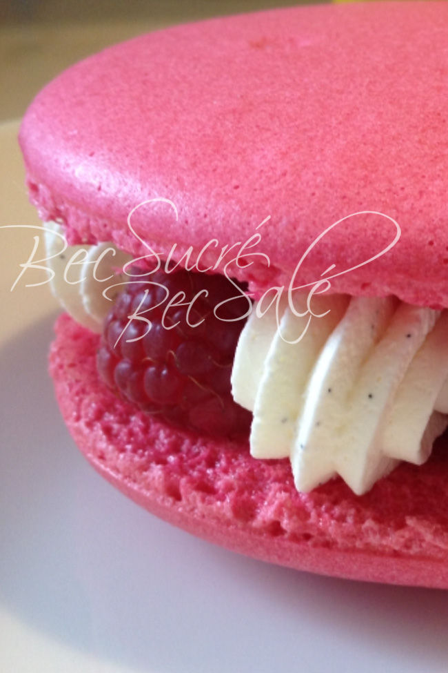 macarons girly aux framboises fraiches bec sucr 233 bec sal 233