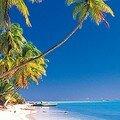 Un petit air de tahiti