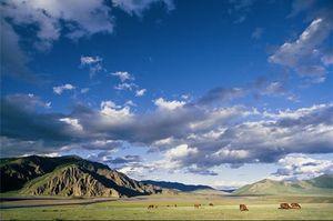 mongolie_238777