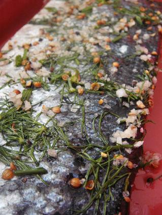 véritable tagliatelle au saumon