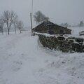 2009 12 21 Madelonnet haut dans la neige et la burle (3)
