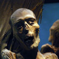 Mummies of Guanajuato