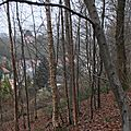Rue du Bois - 20130106_04