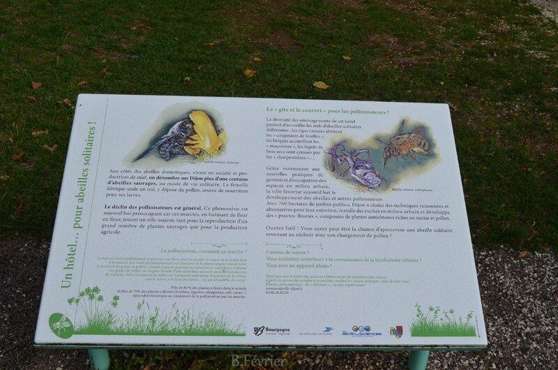 21000 Dijon - Jardin botanique de l'Arquebuse