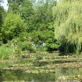 Giverny juillet 2005