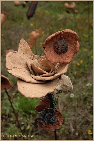 montauger_fleurs_de_terre_copie