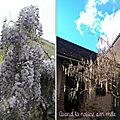 Fiasco glycine ...