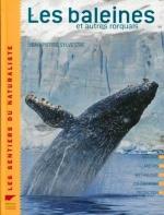 les-baleines-et-autres-rorquals-169402