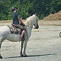 Jeux équestres manchots 2013 (189)