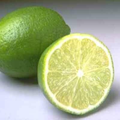 citron vert gp1