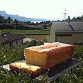 Cake au citron (s.gluten)(s.caséine)