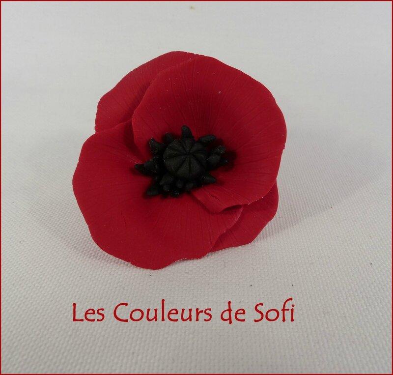 Coquelicot 1
