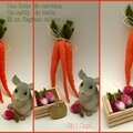 Carottes et radis pour Virginie