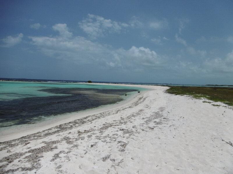 Isla Félipe o Brujusqui (19)