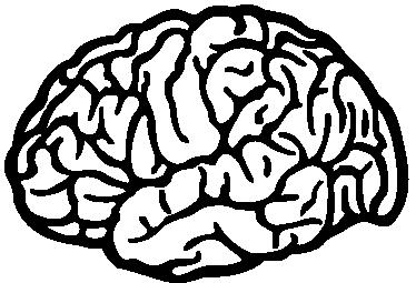 sticker-dessin-cerveau-3218