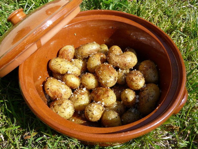 Pommes de terre grenailles les plaisirs de ma table - Race de pomme de terre ...