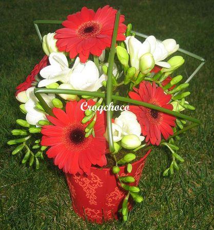 Valentine_s_Germinis_petit_7488