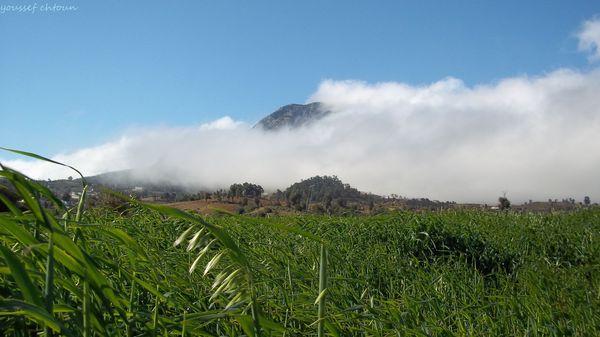 morocco__724_