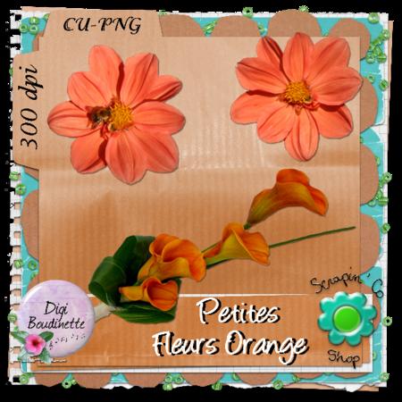 CU_fleur_orange