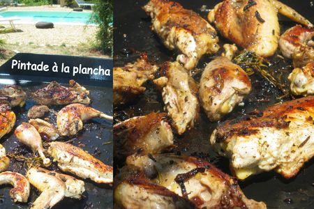 Pintade___la_plancha