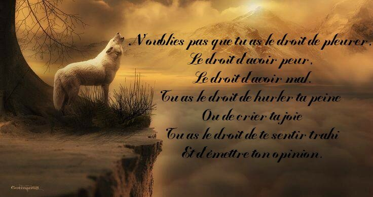 N'oublies pas ...