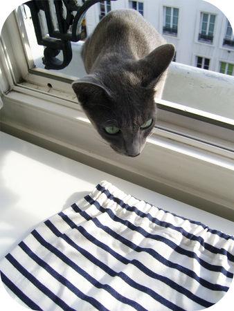 Marin_et_cat