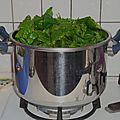 Cannellonis épinards/ricotta