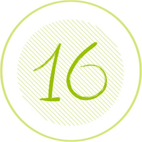 16 vert