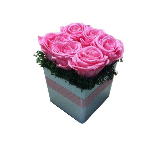 le-kube-rose-