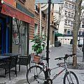 vélo, pot de fleur_1278