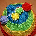 bonnet multicolor dessus