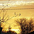 Lever soleil 17111510