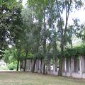 bercy 15 juillet 2009 015