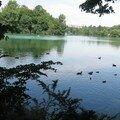 étang lyonnais