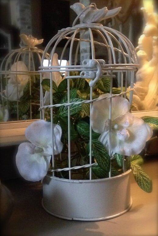 Superbe cage d corative avec petit oiseau sur le dessus - Cage oiseau decorative interieur ...