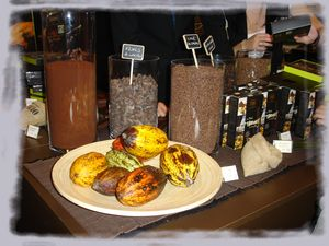 salon_du_chocolat_29_oct_2010_149