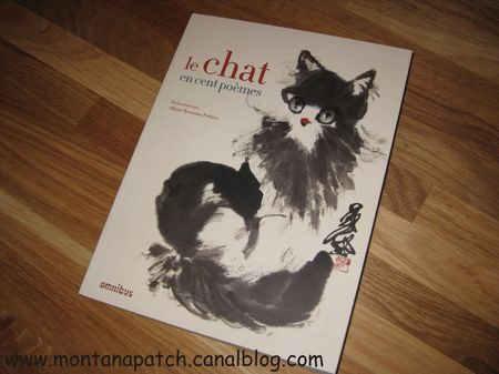 Montanapatch_livre_chat_5